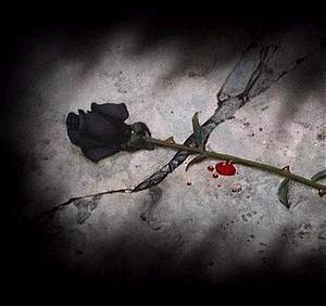 La chica de las rosas